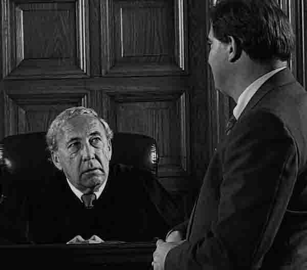 адвокат в суд